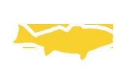 fishing charters galvestontx